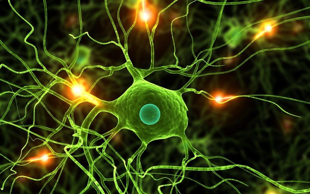 Neuroscientists: Brain activity may mark beginning of memories