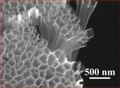 nanotubes_news
