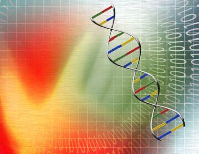 Binary tunnel and DNA Strand